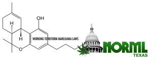 Texas NORML Logo - Molecule